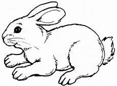 Malvorlagen Tiere Kostenlos Runterladen Malvorlagen Tiere Malen Kostenlose Vorlagen Zum Ausmalen