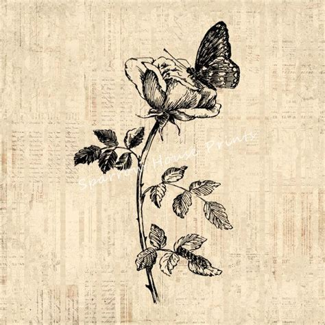 Tattoo Butterfly Vintage | vintage butterfly and rose wall art flower home decor
