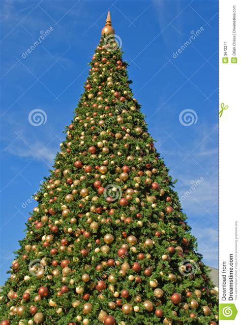 christmas tree stock image image of leaves ribbon