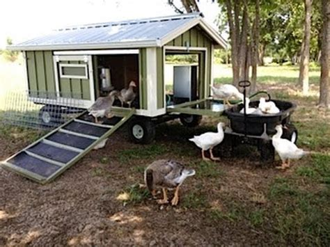 Small Cute House Plans portable goose wagon coop and pond with rain catchment