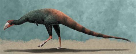 huinculsaurus dinopedia fandom