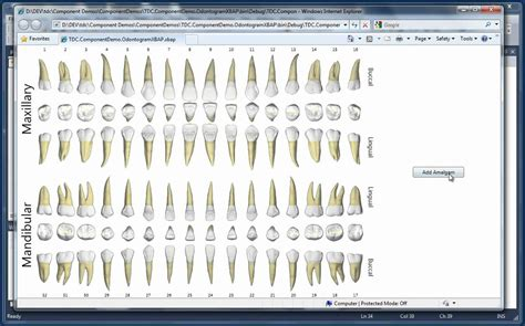 Galerry tooth color chart