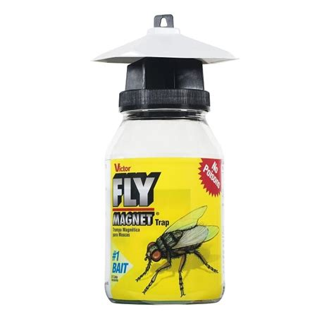 how to trap house flies how to get rid of house flies a review of the best traps killers repellents