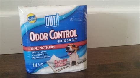 do puppy pads work dealing with pet messes and odors advice a free e book highlights along the way