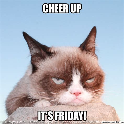 Friday Cat Meme - grumpy cat friday pictures to pin on pinterest pinsdaddy