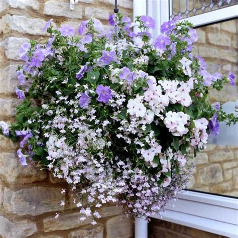 hanging baskets with lights complete hanging basket system with lights search