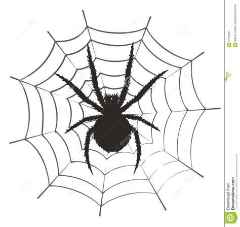 drawing web spider web drawing pencil drawing