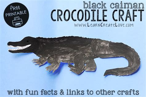 row row row your boat lyrics with alligator 17 best ideas about crocodile craft on pinterest