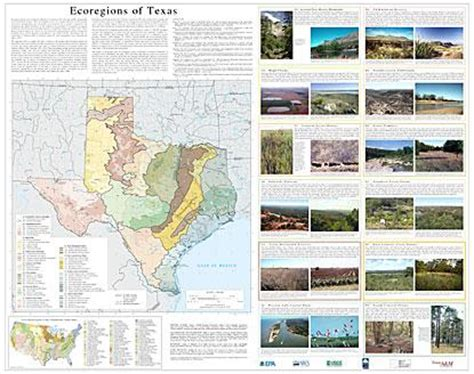texas ecosystems map ecoregion files by state region 6 ecosystems research us epa