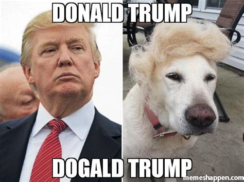 Donald Meme - yuuuuuge question will alec baldwin play trump on snl