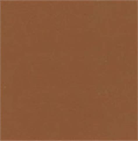 awesome light brown paint 5 light chocolate brown paint color newsonair org