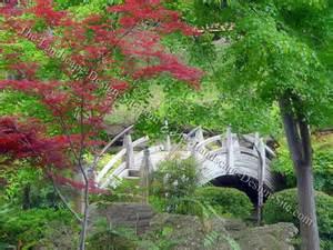 Patio Design Elements Build Easy Your Project Japanese Garden Design Bridge
