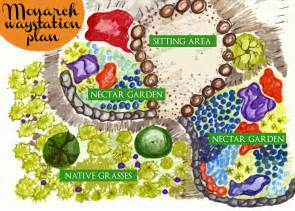 monarch butterfly waystation design project indiegogo