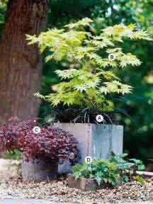 Design For Potted Plants For Shade Ideas Container Garden Recipes For Shade