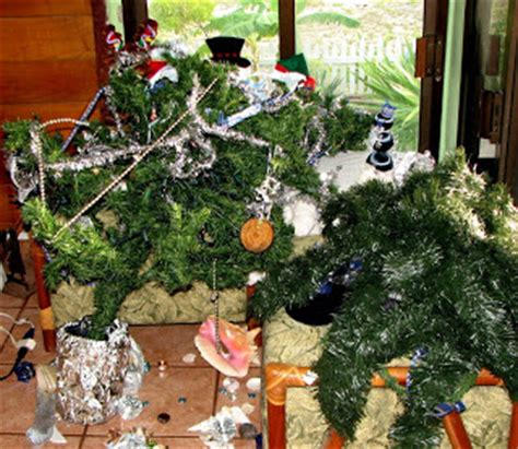 changes in latitudes the great christmas tree disaster