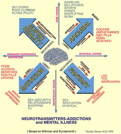mind and or mental states and physical conditions classic reprint books stairway to recovery neurotransmitters