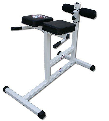 life fitness hyperextension bench trabarev