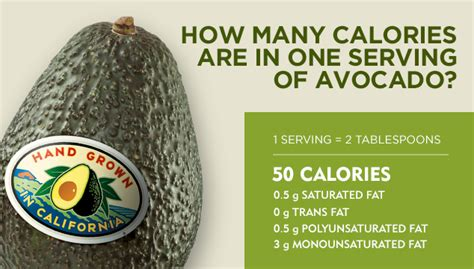 how many calories are in an avocado the scoop avocado blog recipes and more california