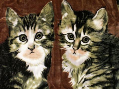 katzen decken tagesdecke kuscheldecke decke plaid mit katze motiv ii