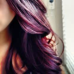 plum black hair color dsk steph diy hair color burgundy plum