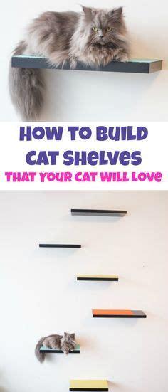 cat shelves diy 25 best ideas about cat shelves on cat wall