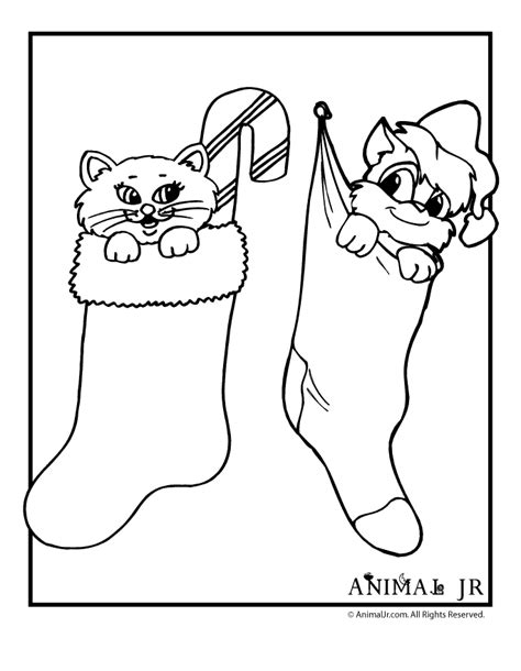 kittens in stockings christmas coloring page animal jr