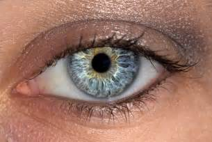 eye color total eye log in