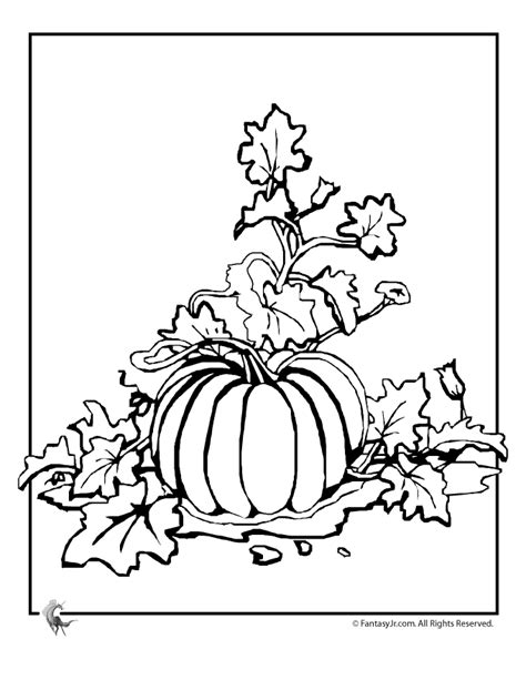 A Pumpkin Patch Coloring Pages Pumpkin Patch Coloring Page