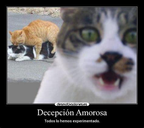 imagenes de decepcion de amor chistosas decepci 243 n amorosa desmotivaciones