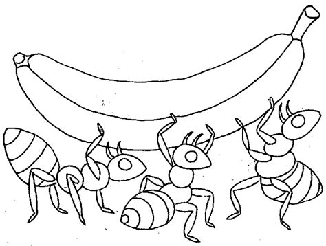Ant Coloring Ants Coloring Page