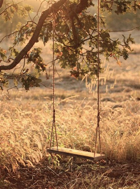 child tree swing 17 best ideas about childrens swings on pinterest