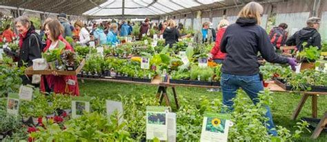 Botanic Gardens Plant Sale Denver Metro News