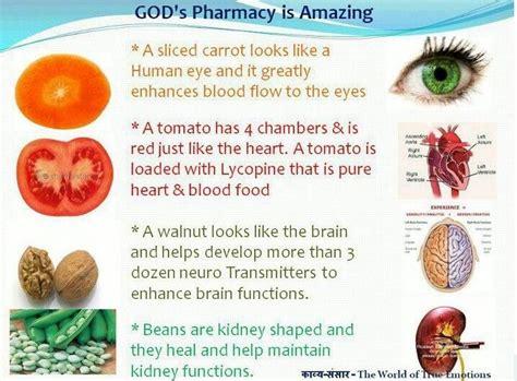 health through gods pharmacy god s pharmacy health charts