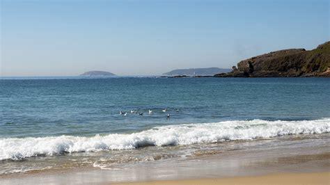 apartamentos montalvo apartamentos montalvo playa tu casa de verano