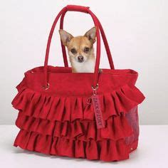yorkie purse carrier yorkie bags carrier on pet carriers carrier and yorkie