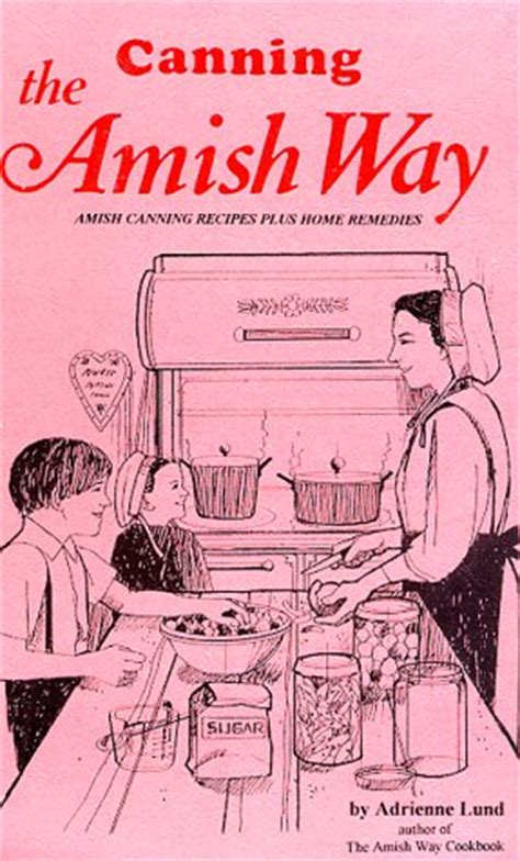 amish abduction amish country justice books dfbookstx on marketplace pulse