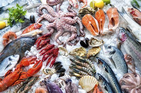 Produk Navida Top wholesale seafood los angeles pacific fresh fish