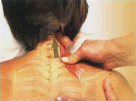 dolor de espalda y cuello 191 c 243 mo eliminarlo sin f 225 rmacos - Nudo Muscular Espalda