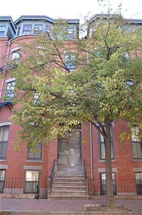 newton housing authority boston housing authority boston housing authority