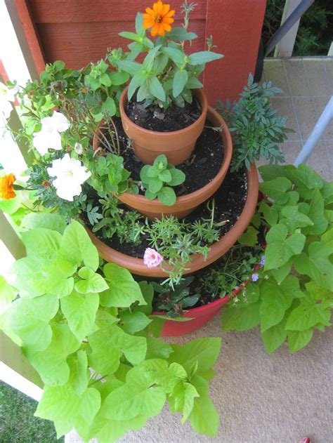 Small Garden Plants Ideas 1000 Images About Garden Ideas On Gardens The Plastics And Plants