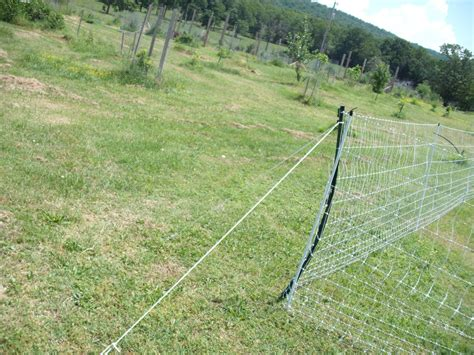 Backyard Chickens Electric Fence Not Sure I Like Premier1 Electric Fence