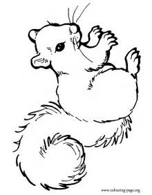 squirrel coloring pages koloringpages