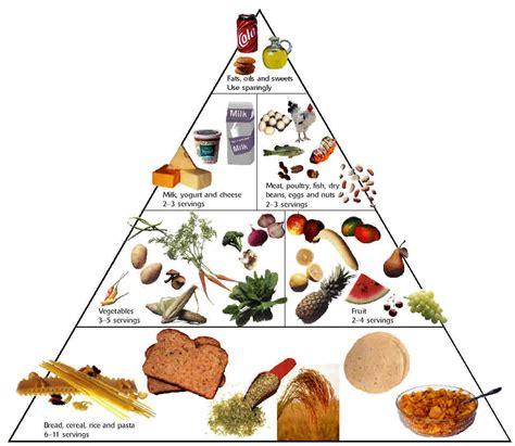 solehahwahab piramid makanan