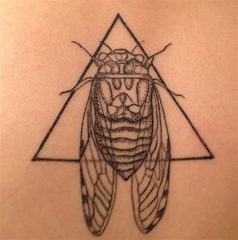 cicada tattoo cicada the i m not writing