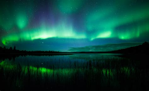 Northern Lights Distributors by Northern Lights Autumn Lake Image Antti