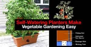 self watering how 5 self watering planters make vegetable gardening easy