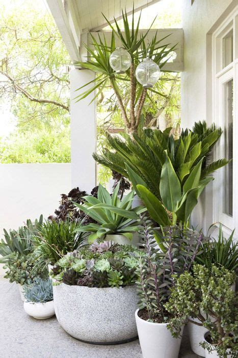 landscape design with potted plants secret gardens of sydney garden fabulousness