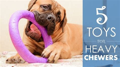 best puppy toys best toys for heavy chewers 5 durable choices a bit of advice herepup