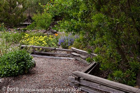 App For Home Design split rail fence in california native plant garden