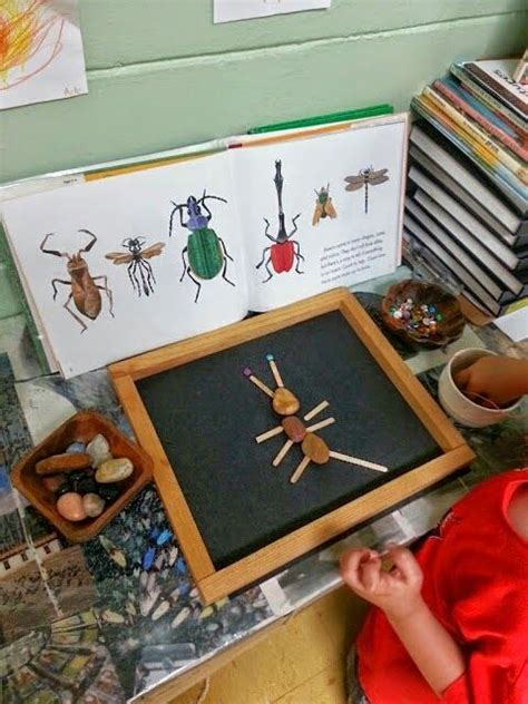 spring themed work events 10 best images about kindergarten science and social